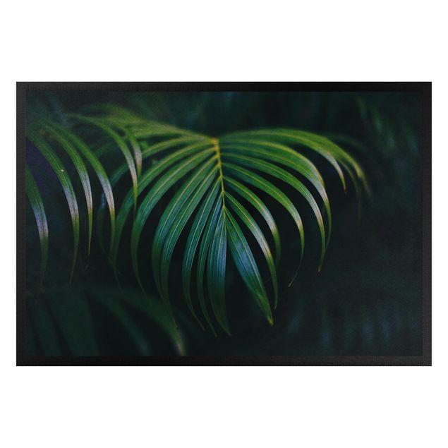 Fußmatte - Dunkle Palmenblätter