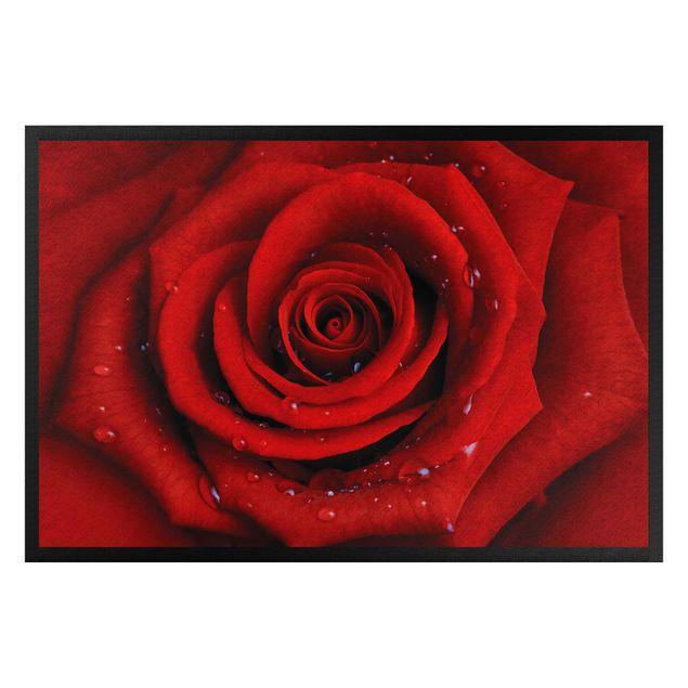 Fußmatte - Rote Rose mit Wassertropfen