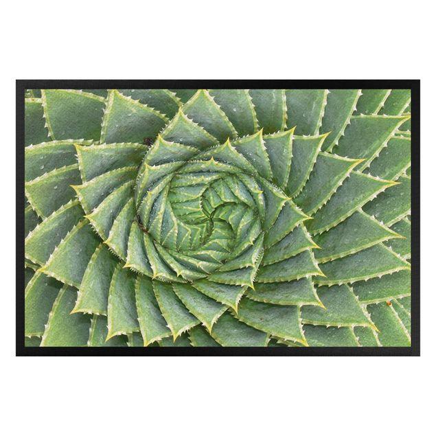 Fußmatte - Spiral Aloe