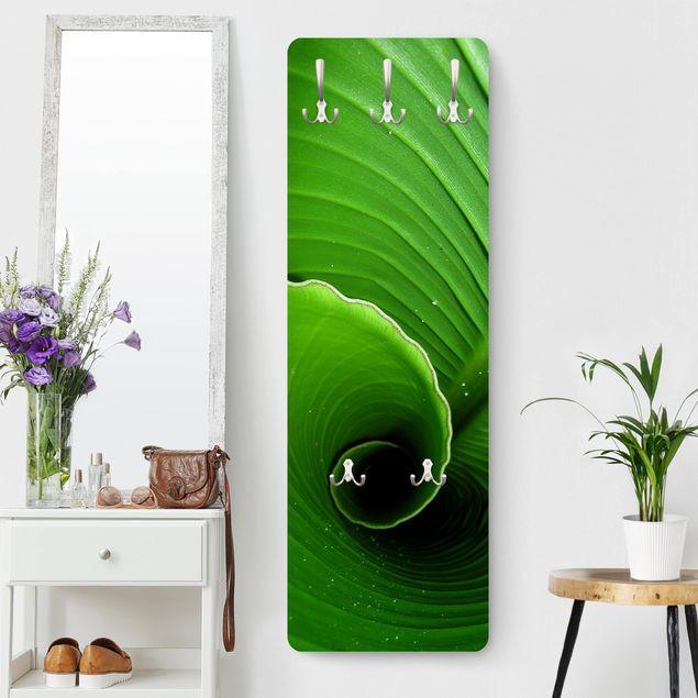 Garderobe - Inside a Banana Leaf