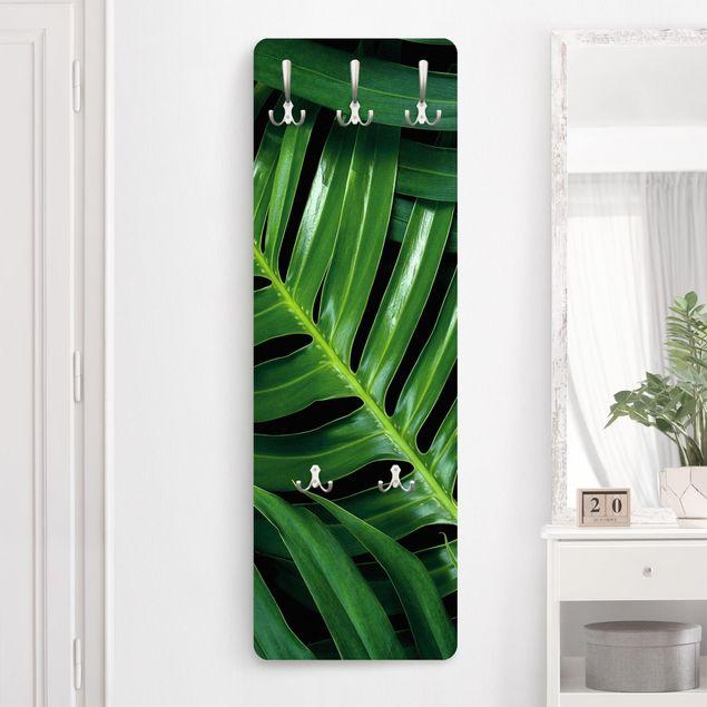 Garderobe - Tropische Blätter Philodendron