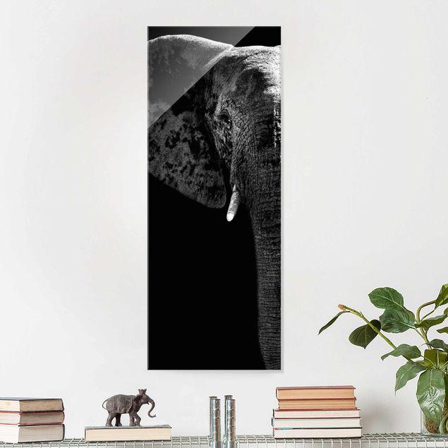 Glasbild - Afrikanischer Elefant schwarz-weiss - Panorama Hoch
