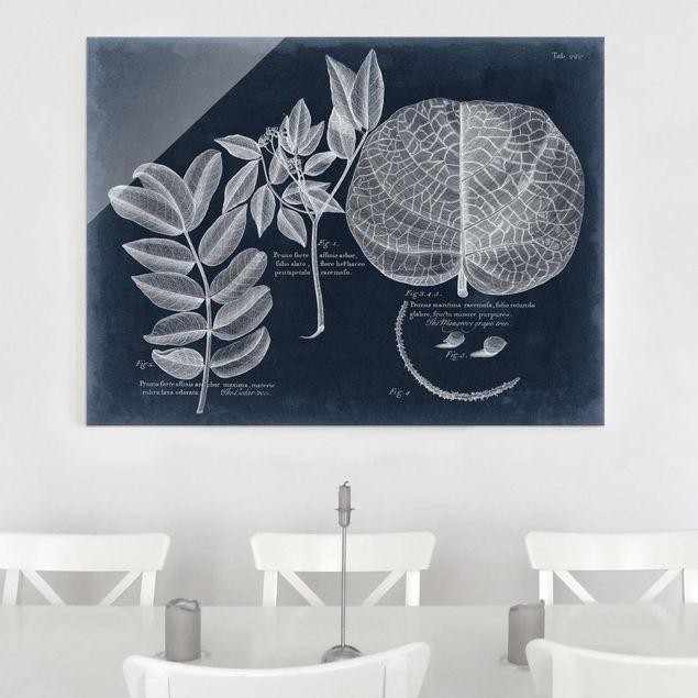 Glasbild - Blattwerk Dunkelblau - Mangrove - Querformat 3:4