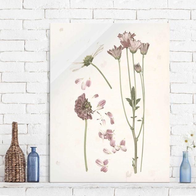 Glasbild - Herbarium in rosa II - Hochformat 4:3