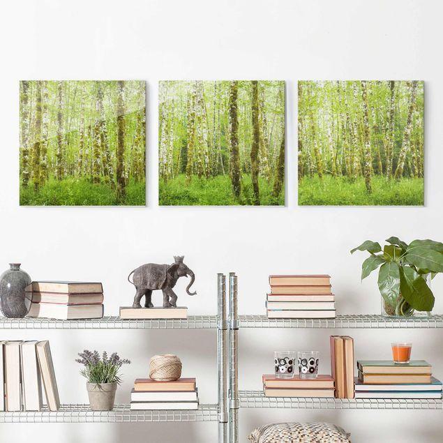 Glasbild mehrteilig - Hoh Rainforest Olympic National Park - 3-teilig