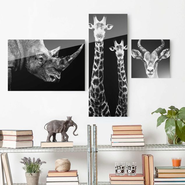 Glasbild mehrteilig - Safari Trilogie I 3-teilig