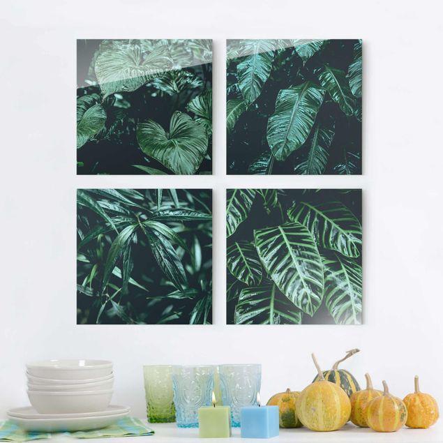 Glasbild mehrteilig - Tropische Pflanzen - 4-teilig