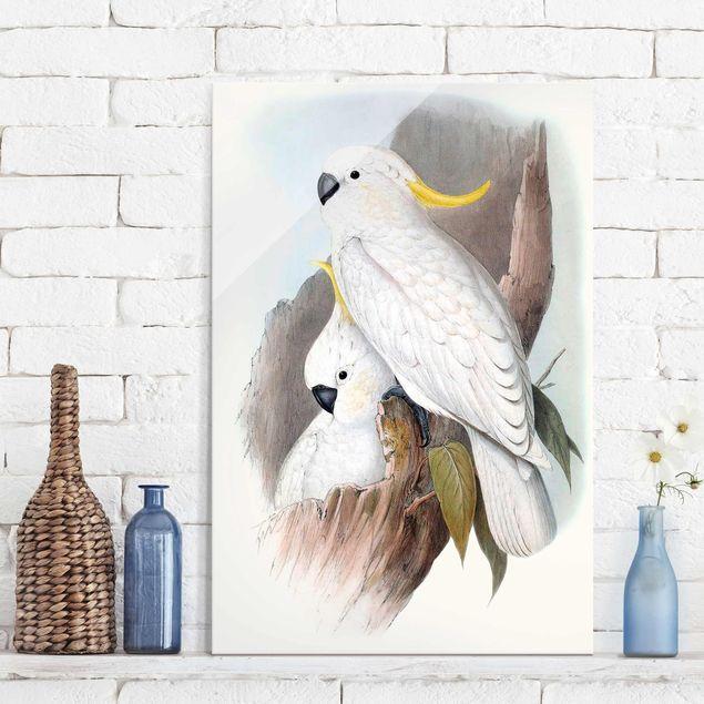 Glasbild - Pastell Papageien III - Hochformat 3:2