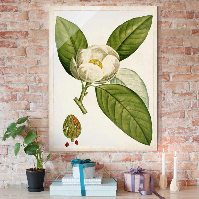 Glasbild - Tableau Blatt Blüte Frucht II - Hochformat 4:3