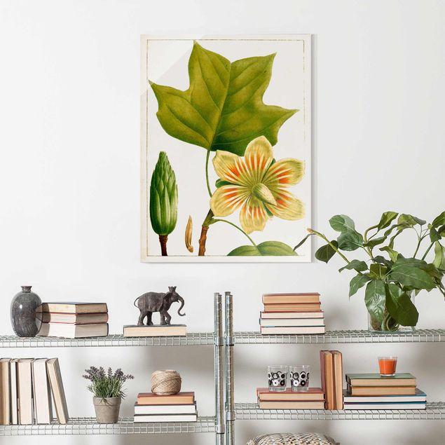 Glasbild - Tableau Blatt Blüte Frucht IV - Hochformat 4:3