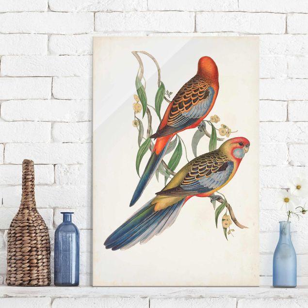 Glasbild - Tropische Papageien II - Hochformat 3:2