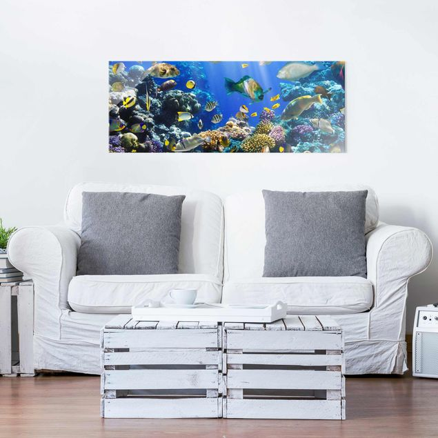 Glasbild - Underwater Reef - Panorama Quer
