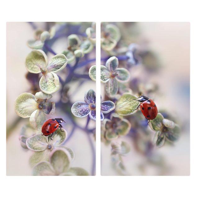 Herdabdeckplatte Glas - Marienkäfer im Garten