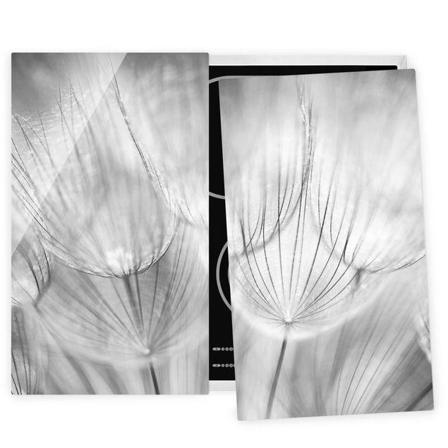 Herdabdeckplatte Glas - Pusteblumen Makroaufnahme in schwarz weiß
