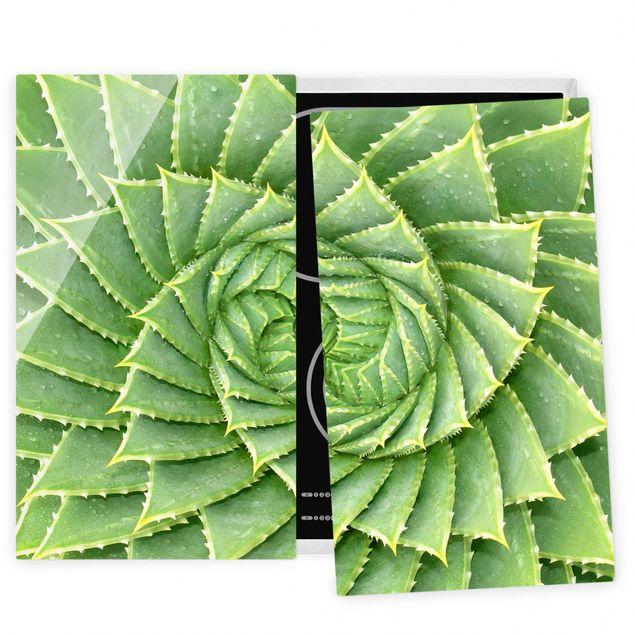 Herdabdeckplatte Glas - Spiral Aloe