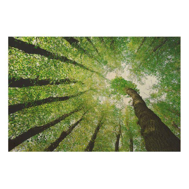 Holzbild - Bäume des Lebens - Quer 3:2