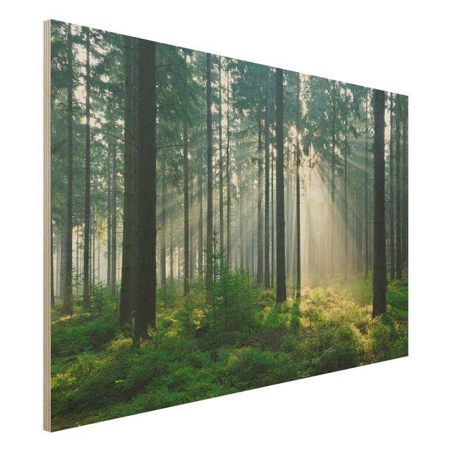 Holz Wandbild - Enlightened Forest - Quer 3:2