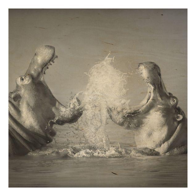 Holz Wandbild - Hippo Fight - Quadrat 1:1