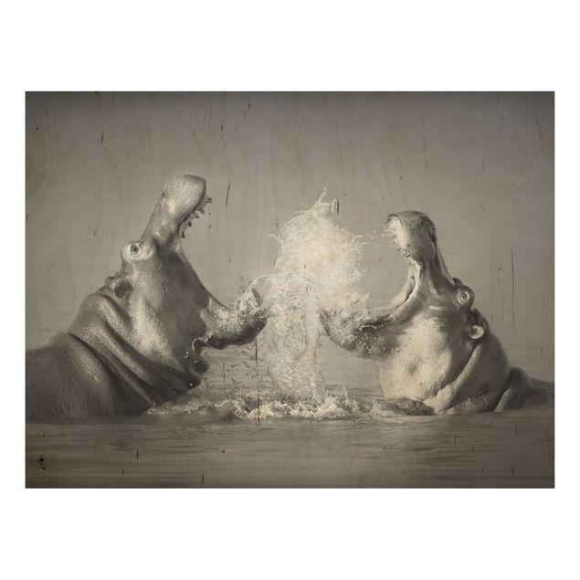 Holz Wandbild - Hippo Fight - Quer 4:3