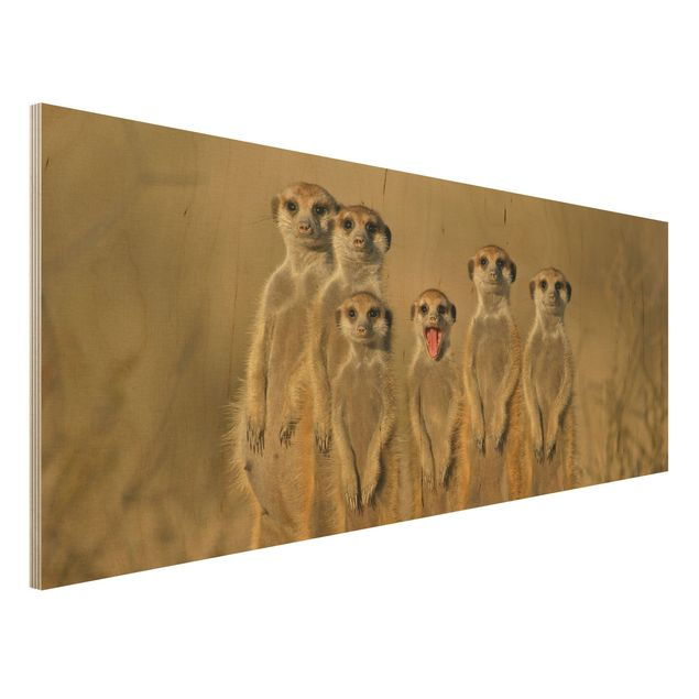 Holzbild - Meerkat Family - Panorama Quer