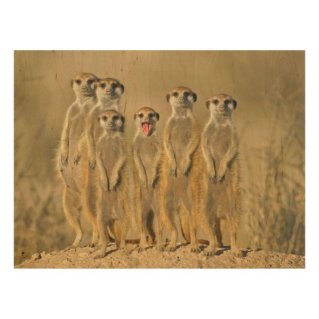 Holzbild - Meerkat Family - Quer 4:3