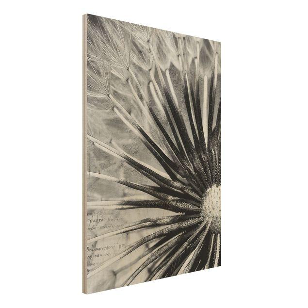 Holzbild Pusteblume Schwarz & Weiß - Hoch 3:4