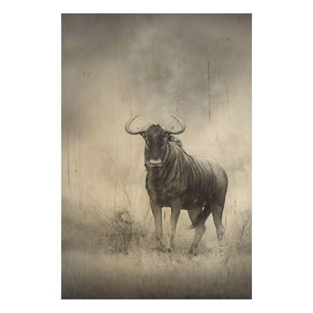 Holzbild - Staring Wildebeest - Hoch 2:3