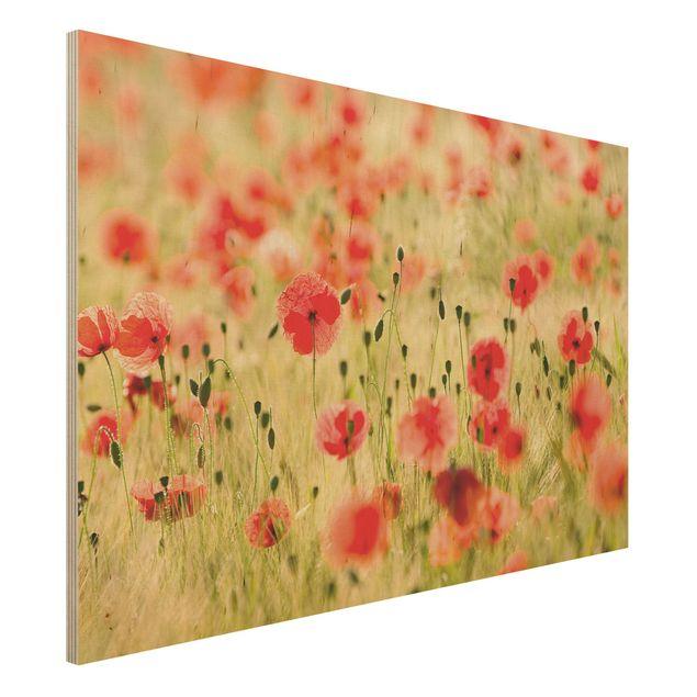 Kunstdruck auf Holz - Summer Poppies - Quer 3:2