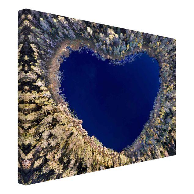 Leinwandbild - Im Herzen des Waldes - Querformat 4:3