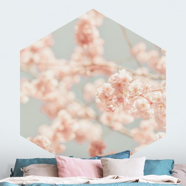 Hexagon Mustertapete selbstklebend - Kirschblüten Glow