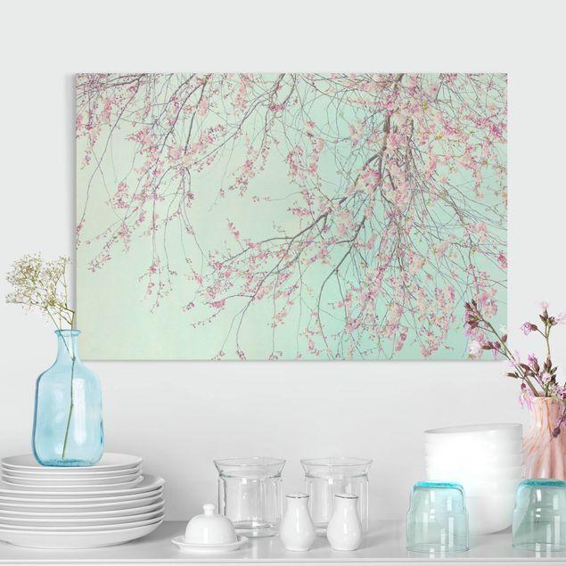 Leinwandbild - Kirschblütensehnsucht - Querformat 3:2