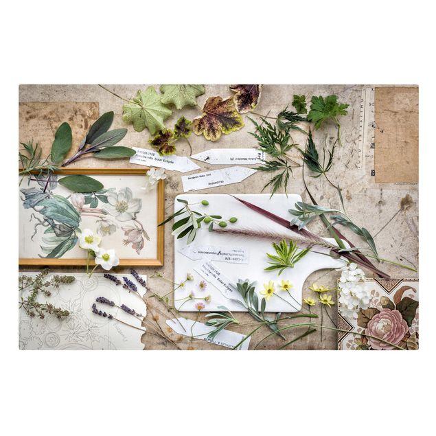 Leinwandbild - Blumen und Gartenkräuter Vintage - Quer 3:2