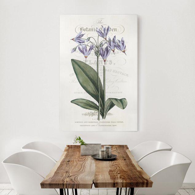 Leinwandbild - Botanisches Tableau - Götterblume - Hochformat 3:2
