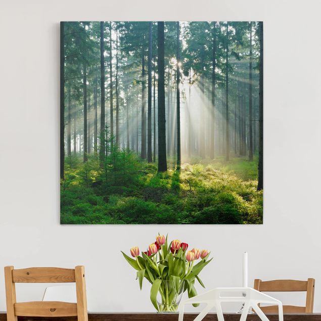 Leinwandbild - Enlightened Forest - Quadrat 1:1