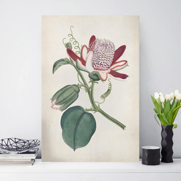 Leinwandbild - Gartenschönheit IV - Hochformat 3:2