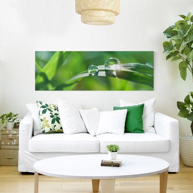 Leinwandbild - Green Ambiance II - Panorama Quer