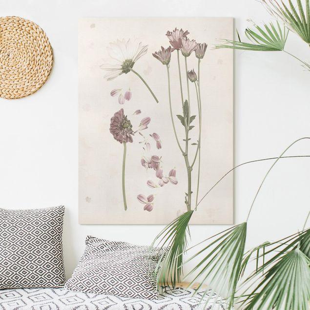 Leinwandbild - Herbarium in rosa II - Hochformat 4:3