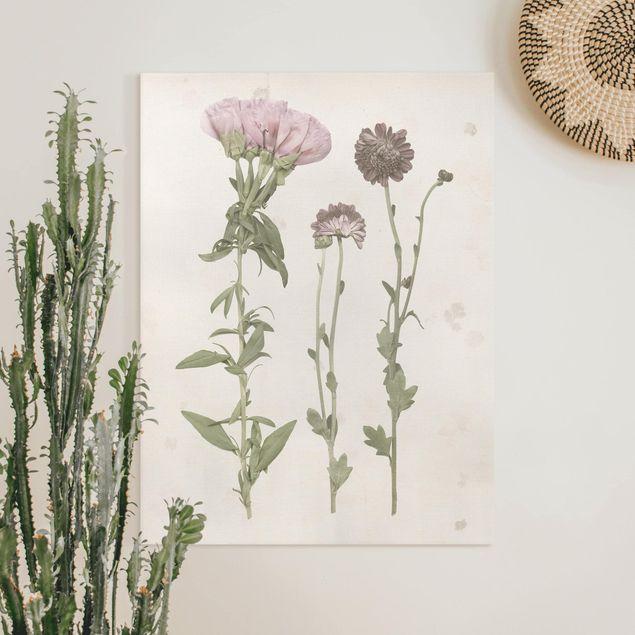 Leinwandbild - Herbarium in rosa III - Hochformat 4:3