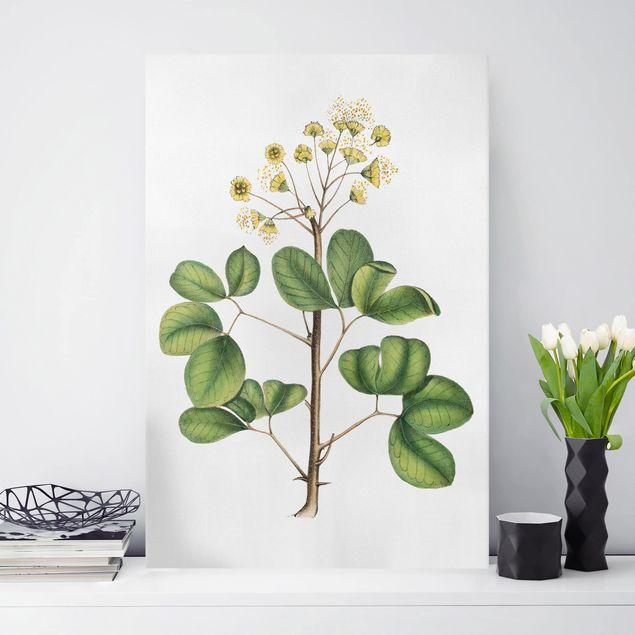 Leinwandbild - Laubwerk mit Blüten IV - Hochformat 3:2