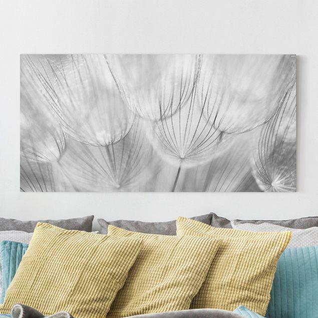 Leinwandbild - Pusteblumen Makroaufnahme in schwarz weiss - Quer 2:1