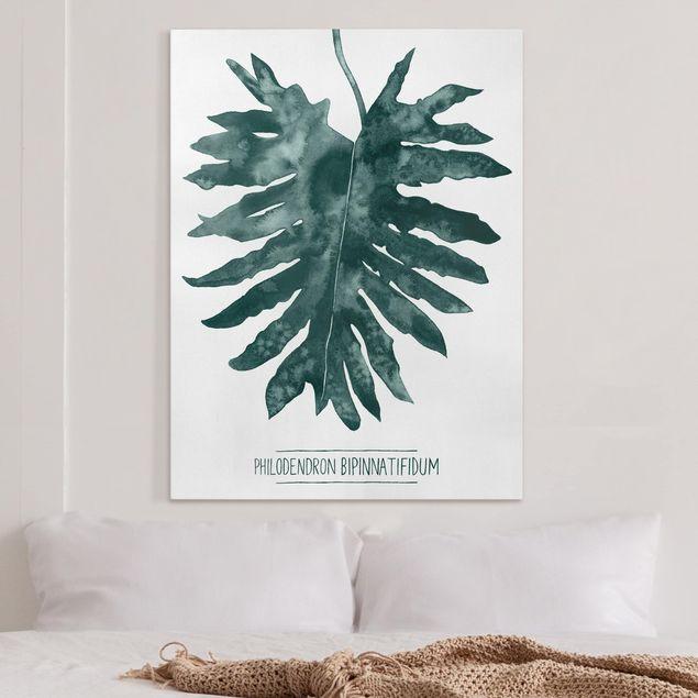 Leinwandbild - Smaragdgrüner Philodendron Bipinnatifidum - Hochformat 4:3