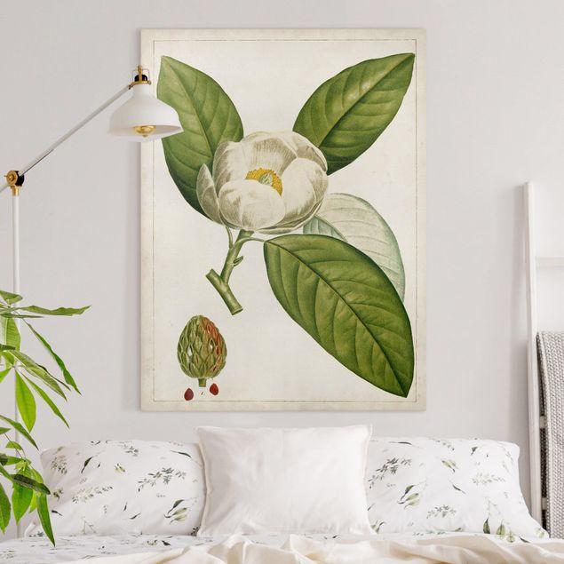 Leinwandbild - Tableau Blatt Blüte Frucht II - Hochformat 4:3
