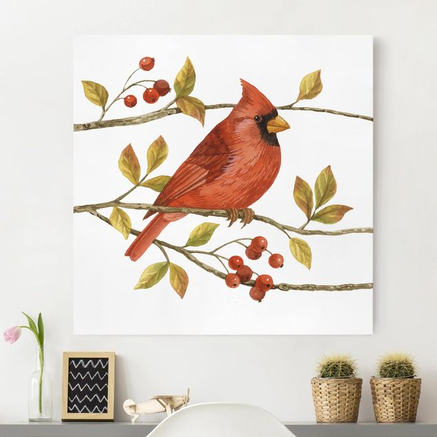 Leinwandbild - Vögel und Beeren - Rotkardinal - Quadrat 1:1