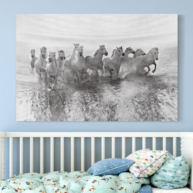 Leinwandbild - Weiße Pferde im Meer - Quer 3:2