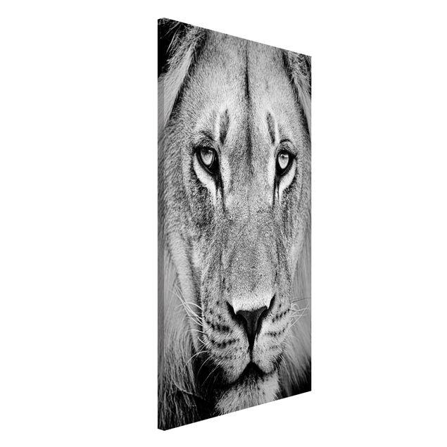 Magnettafel - Alter Löwe - Memoboard Hoch