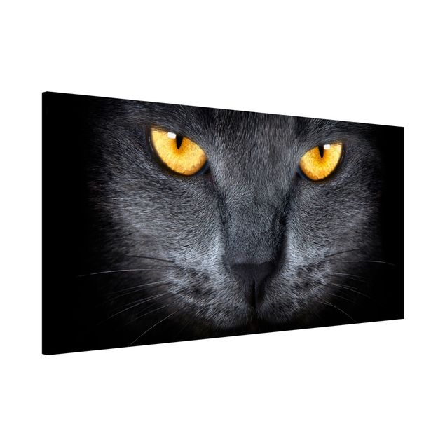 Magnettafel - Cats Gaze - Memoboard Panorama Quer