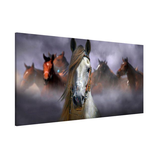 Magnettafel - Horses in the Dust - Memoboard Panorama Quer