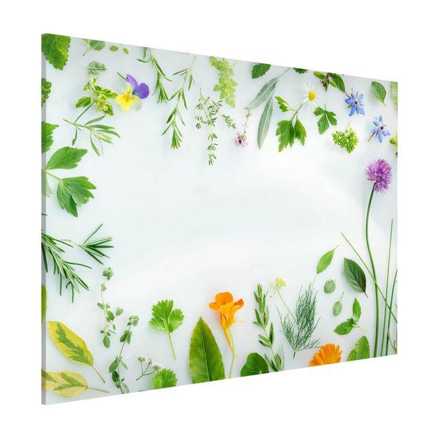 Magnettafel - Kräuter und Blüten - Memoboard Querformat
