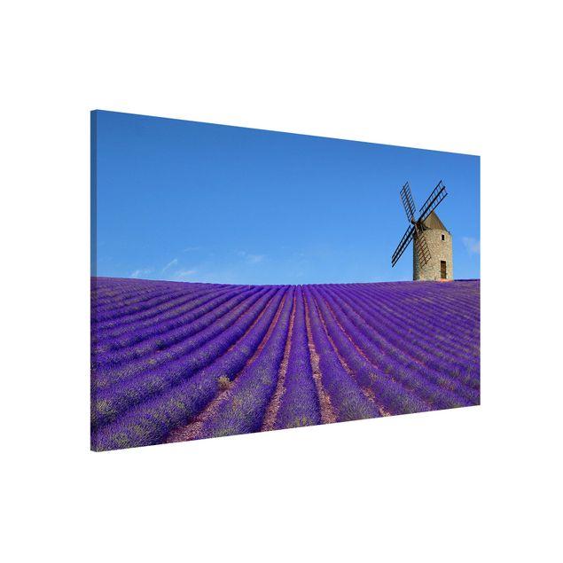 Magnettafel - Lavendelduft in der Provence - Memoboard Hoch