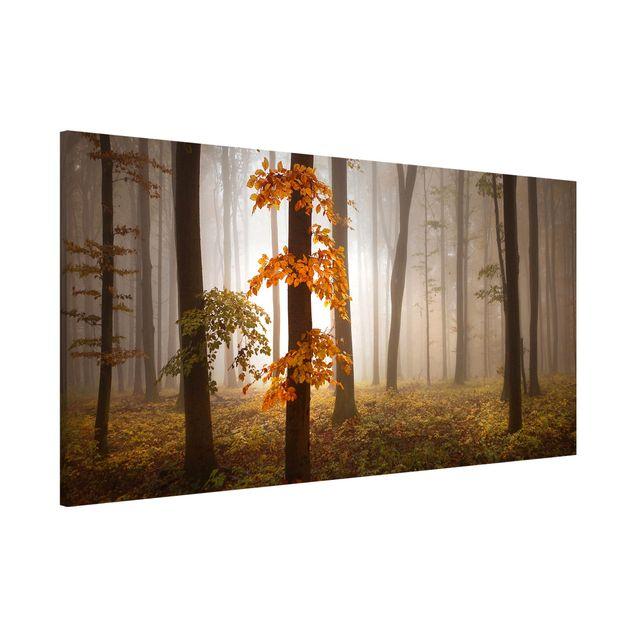 Magnettafel - Novemberwald - Memoboard Panorama Quer
